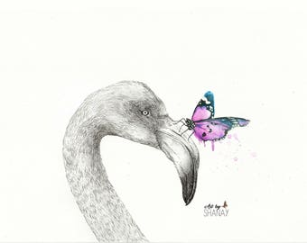 Print of an original pen and watercolour drawing - Leech - Flamingo and Butterfly