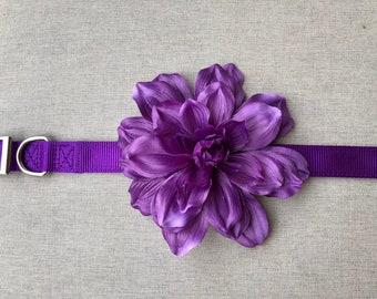 Large Purple Flower Dog Collar