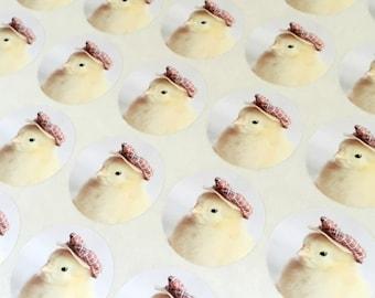 """Chicks in Hats Stickers Plaid Golfing Cap Chicken Stickers Seals 1.5"""" Round (12)"""