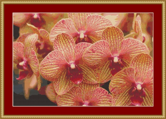 Yellow Red Orchids Cross Stitch Pattern /Digital PDF Files /Instant downloadable