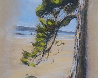"Painting landscape original dry pastel ""Fir forest"""