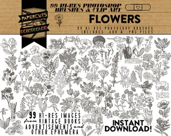 Flowers - 99 Hi-Res Photoshop Brushes / Clip Art / Image Pack - Includes .ABR and .PNG Files