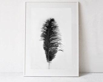 Black and White Print, Feather Art Print, Feather Print, Wall Art Modern Poster, Minimalist Poster, Digital Print Art DOWNLOAD Printable Art
