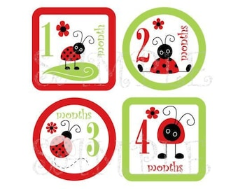 Baby Monthly Iron On  Transfers - Cute Little Lady Bugs P1