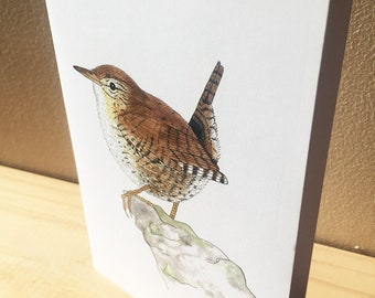 Wren Greetings Card - Blank for your own message