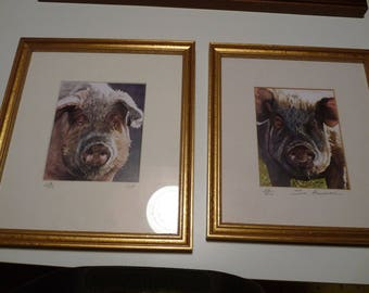 Two pig pictures - artist Sue Haserman