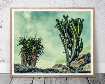 Cactus Print, Southwest Decor, Cactus Wall Art, Printable Art, Arizona Desert, Nature Art, Modern cacti print, South western, Home Decor