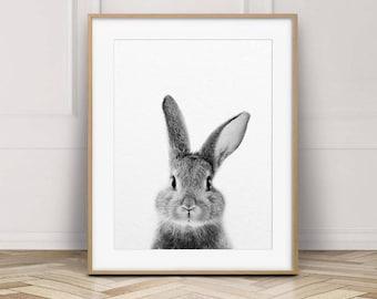Rabbit Print, Bunny Rabbit Art, Black & White Animal Prints, Rabbit Wall Art, Bunny Print, Woodland Animals, Nursery Decor, Printable Art