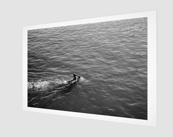 The Swimmer, San Francisco Summer Fine Art Print, 1:50 Limited Edition / home decor / decoration / photo / photography / black and white /
