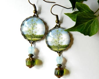 Glass cabochon, tree, green and blue pattern earrings