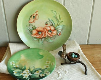 2 Vintage Hand Painted Floral Plates Poppies and Blossoms