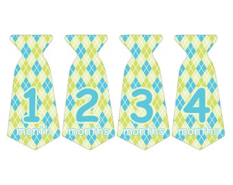 12 Pre-cut Monthly Baby Milestone Waterproof Glossy Stickers - Neck Tie Shape - Design T003-01