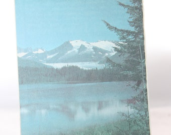 1987 Tongass National Forest Alaska Map -- Topography, Geography -- Souvenir, Vacation -- Map
