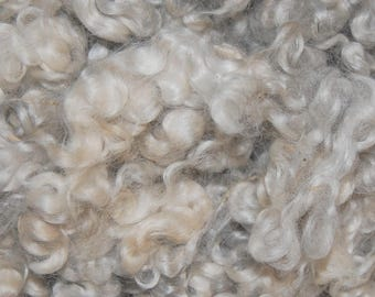 Cotswold Wool Locks, Spinning Fiber, Felting, Wool Doll Hair, Doll Wig, Santa Beards, Blythe Reroot, White with traces of Silver Gray 8 oz