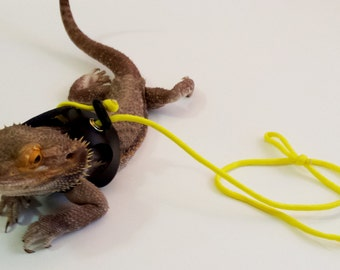 Bearded Dragon Leashes! BLACK..Two sizes! Choose your cord colour!