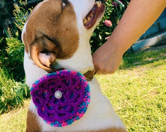 Dog Collar Corsage - Handmade Crochet Flower Accessory