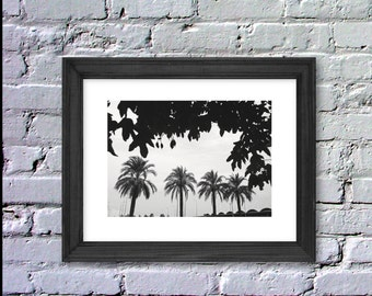 Digital, Instant Download, Four Palmtrees Photography, Palm Print, Black & White, Inspiration Poster, 8x10, LeBoer