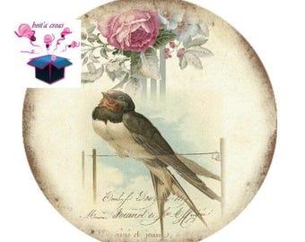 1 cabochon clear 20mm vintage birds theme