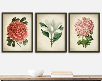 Botanical print SET of 3 art posters, botanical dorm wall, botanical  instant collection, flowers print set, pink peony print, magnolia
