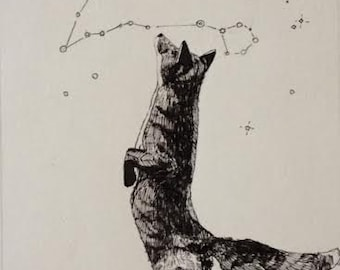 Fox and Stars original pen and ink drawing with custom constellation