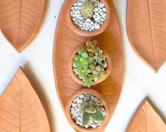 Terra cotta succulent planter, with leaf shaped saucer, tiny pots windowsill garden