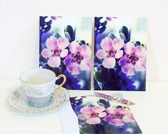 postcard set, tea tree blossom botanical postcards, flower postcards, zen photography, pink blossom