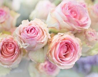 Paris Photography - Roses in Paris Flower Market, French Travel Photograph, Romantic Home Decor, Large Wall Art