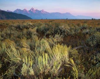 Sunrise on the Sage Flats, Grand Teton National Park, Wyoming