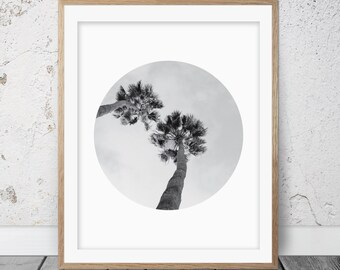 Palm tree, Palm tree print, Palm tree photo, Palm tree art, Palm tree decor, Tree photography, Tropical wall art, Palm tree wall art, 057