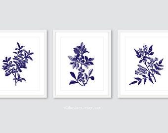 Plantes murales - botanique Art mural - feuille de tirages, tirages d'usine - ensemble de gravures sur le 3 - 5 x 7 ou 8 x 10 - Custom Color, cadres non inclus