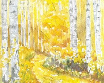 Aspen Trees Watercolor Painting - 8 x 10 - Giclee Fine Art Print - 8.5x11 - Autumn Fall