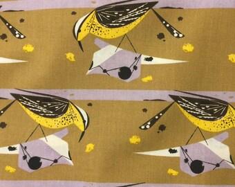 Cactus Wren in Mustard by Charley Harper for Birch Organic Fabric