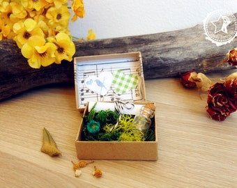 Forest Secret Message Box Make a wish, Custom Card Birthday Wedding Love Friendship Message in a bottle, gift friends dandelion pocket box