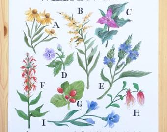 Pennsylvania Wildflowers Watercolor Print