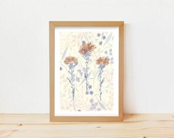 dibujo flores, dibujo cardo, dibujo floral, dibujo flores secas, vintage print, dibujo botánico, flores vintage, dibujo floral delicado