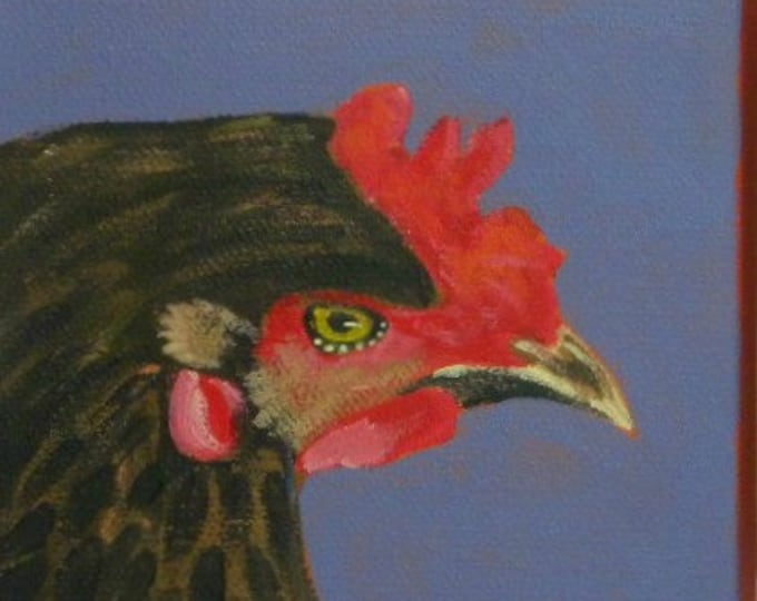 Chicken blank greeting card