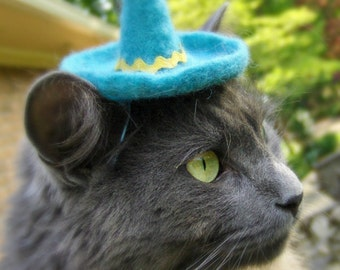Cat Sombrero - Small Dog Sombrero - Hand Felted Wool Hat -  Turquoise Hat Photo Prop