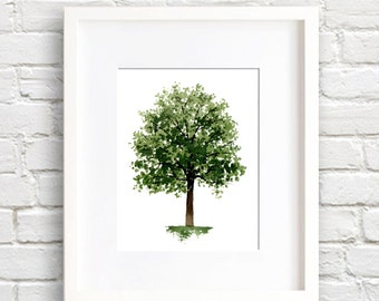 Maple Tree - Art Print - Wall Decor - Watercolor Painting