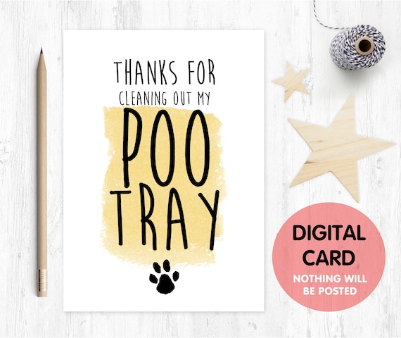 father's day card printable cat dad father's day card digital download birthday card from the cat thanks for cleaning out my poo try funny