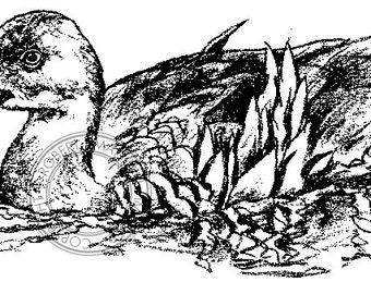 Plumed Whistle Duck pencil drawing - bird art, wildlife art - nature print of original artwork - A4
