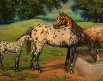 LOTS o SPOTS n DOTS Appaloosa horses 4x6 original equine oil painting by Kerry Nelson