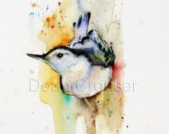 WHITE BREASTED NUTHATCH Watercolor Print by Dean Crouser
