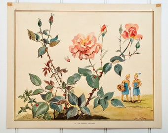 Eileen Soper vintage 1950s classroom educational poster - roses, elves, pixies -  FREE SHIPPING