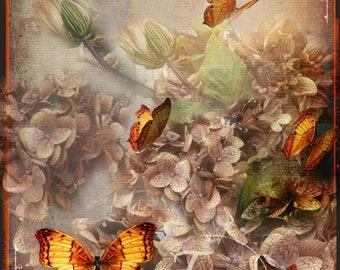 Hydrangea Serenity Art Card