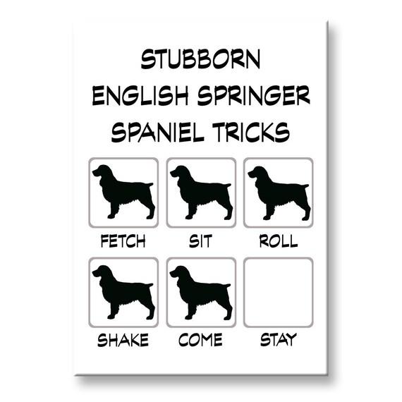 English Springer Spaniel Stubborn Tricks Fridge Magnet