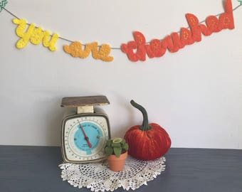 You are cherished, best friend gift, birthday present, orange ombre Garland, hostess gift ideas, thank you banner, personalized teacher sign