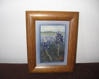 Vintage B. Herd Texas Bluebonnet Framed Painting - Vintage B. Herd Framed Bluebonnet Picture -