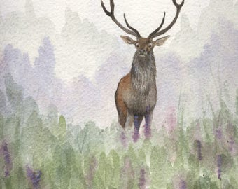 Cerf dans la brume  - Deer in the fog - animaux, forêt, chasse, sauvage, majestueux, champs