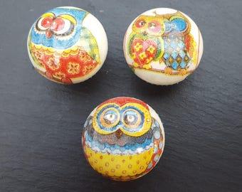 Hand Decorated Fun Owl Design Drawer Knob Pull