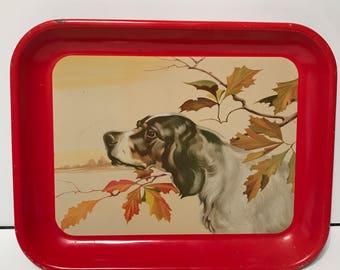 Vintage English Setter serving tray